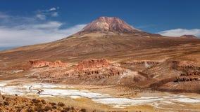Ajardine com o vulcão de Cariquima no fundo, perto do Foto de Stock Royalty Free