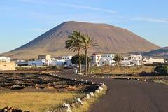 Ajardine com o vulcão em Lanzarote, Ilhas Canárias, Espanha Imagem de Stock Royalty Free