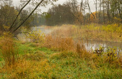 Ajardine com oblast enevoado de Vorskla Sumskaya, Ucrânia Foto de Stock