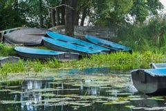 Ajardine com os barcos azuis do enfileiramento de madeira velho que aterram no riverbank verde Fotografia de Stock
