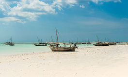 Ajardine com os barcos de pesca na costa, Zanzibar Imagem de Stock