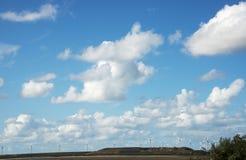 Ajardine com os moinhos de vento em Holland Imagem de Stock Royalty Free