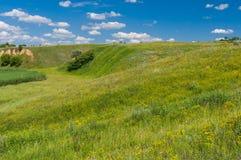 Ajardine com os montes cobertos de vegetação com as gramas selvagens na área ucraniana rural Imagens de Stock