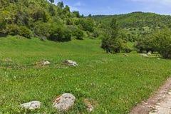 Ajardine com os montes verdes perto da vila de Fotinovo na montanha de Rhodopes, Bulgária Foto de Stock