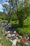 Ajardine com os montes verdes perto da vila de Fotinovo na montanha de Rhodopes, Bulgária Fotografia de Stock