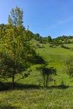 Ajardine com os montes verdes perto da vila de Fotinovo na montanha de Rhodopes, Bulgária Fotografia de Stock Royalty Free