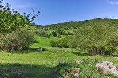 Ajardine com os montes verdes perto da vila de Fotinovo na montanha de Rhodopes, Bulgária Fotos de Stock Royalty Free