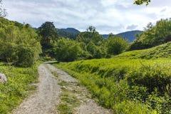 Ajardine com os montes verdes perto da vila de Fotinovo na montanha de Rhodopes, Bulgária Fotos de Stock