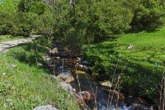 Ajardine com os montes verdes perto da vila de Fotinovo na montanha de Rhodopes, Bulgária Imagem de Stock