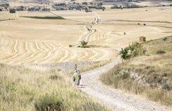 Ajardine com os peregrinos que andam uma estrada secundária em um dia de verão em Hornillos del Camino, Burgos Imagem de Stock Royalty Free