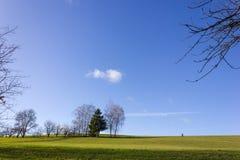 ajardine com passeio e árvore do homem no adve do céu azul em dezembro Imagens de Stock
