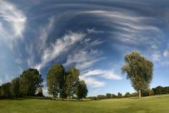 Ajardine com pastagem, árvores e nuvens de cirro Imagens de Stock
