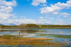 Ajardine com pesca do homem da costa do lago Imagens de Stock Royalty Free