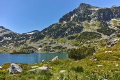 Ajardine com pico de Dzhangal e lago Popovo, montanha de Pirin Imagens de Stock Royalty Free