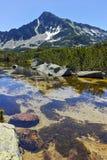 Ajardine com pico de Sivrya e lagos Banski, montanha de Pirin Imagens de Stock