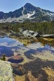 Ajardine com pico de Sivrya e lagos Banski, montanha de Pirin Imagens de Stock Royalty Free