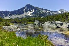 Ajardine com pico de Sivrya e lagos Banski, montanha de Pirin Fotos de Stock