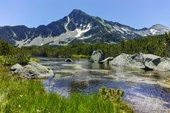 Ajardine com pico de Sivrya e lagos Banski, montanha de Pirin Imagem de Stock