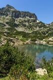 Ajardine com pico dos montes verdes e do Dzhangal, montanha de Pirin Fotos de Stock Royalty Free