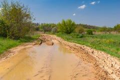 Ajardine com poça grande em uma estrada de terra Fotografia de Stock Royalty Free