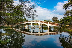 Ajardine com a ponte através do espelho como a superfície do rio Imagem de Stock