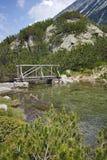 Ajardine com a ponte de madeira sobre o rio da montanha, montanha de Pirin Imagem de Stock