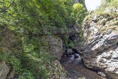 Ajardine com a ponte de madeira sobre o rio, Erma River Gorge Imagens de Stock