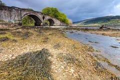 Ajardine com ponte e rio Foto de Stock