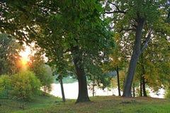 Ajardine com por do sol no parque do parque com as árvores e o lago verdes grandes Fotografia de Stock Royalty Free