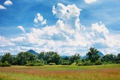 Ajardine com prados, árvores, montes e um cloudscape agradável Kali Imagens de Stock