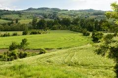 Ajardine com prados e vila no vale de Curone, Piedmont, I Imagem de Stock