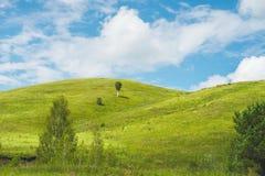 Ajardine com prados, montes e o céu azul Imagens de Stock