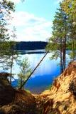 Ajardine com a ravina arenosa da floresta do lago e o pinho caído Fotos de Stock Royalty Free