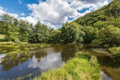 Ajardine com reflexão da água, nuvens, floresta, árvores Fotografia de Stock