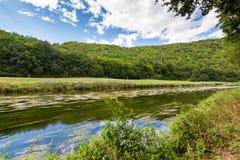Ajardine com reflexão da água, nuvens, floresta, árvores Fotografia de Stock Royalty Free