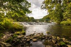 Ajardine com reflexão da água, nuvens, floresta, árvores Imagens de Stock Royalty Free