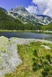 Ajardine com reflexão do pico de Muratov no rio, montanha de Pirin Foto de Stock