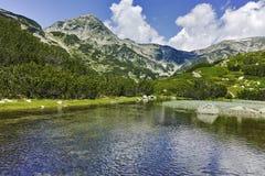 Ajardine com reflexão do pico de Muratov no rio, montanha de Pirin Fotos de Stock Royalty Free