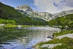 Ajardine com reflexão do pico de Muratov no rio, montanha de Pirin Imagens de Stock