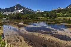 Ajardine com reflexão do pico em lagos Banski, montanha de Sivrya de Pirin Imagem de Stock Royalty Free