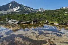 Ajardine com reflexão do pico em lagos Banski, montanha de Sivrya de Pirin Fotografia de Stock
