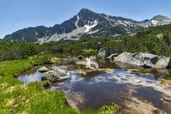 Ajardine com reflexão do pico em lagos Banski, montanha de Sivrya de Pirin Imagem de Stock