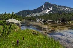 Ajardine com reflexão do pico em lagos Banski, montanha de Sivrya de Pirin Fotos de Stock Royalty Free