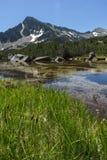 Ajardine com reflexão do pico em lagos Banski, montanha de Sivrya de Pirin Fotografia de Stock Royalty Free