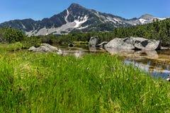 Ajardine com reflexão do pico em lagos Banski, montanha de Sivrya de Pirin Imagens de Stock