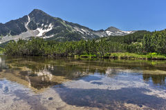Ajardine com reflexão do pico em lagos Banski, montanha de Sivrya de Pirin Fotos de Stock
