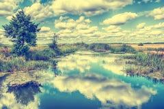 Ajardine com rio, árvores e nuvens no céu Fotos de Stock