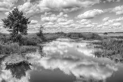 Ajardine com rio, árvores e nuvens no céu Fotografia de Stock Royalty Free