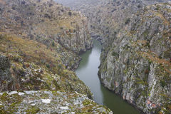 Ajardine com rio e penhascos no del Douro de Arribes spain Fotografia de Stock Royalty Free