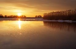 Ajardine com rio, juncos e céu do por do sol Foto de Stock Royalty Free